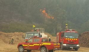 incendios forestales mintrab
